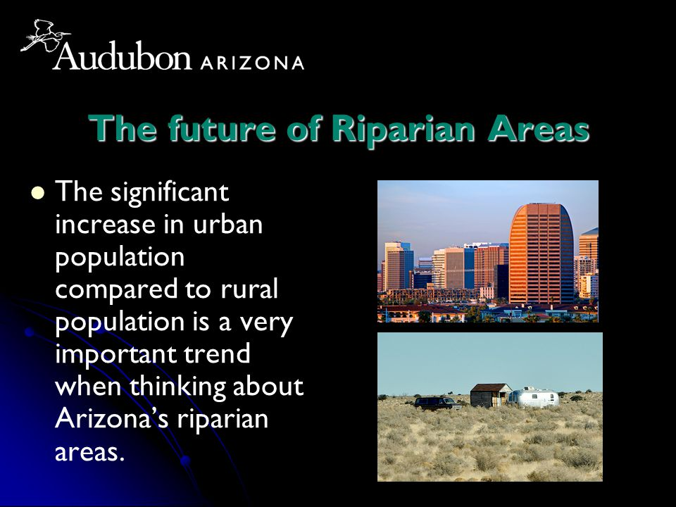 The future of Riparian Areas The significant increase in urban population compared to rural population is a very important trend when thinking about Arizona's riparian areas.