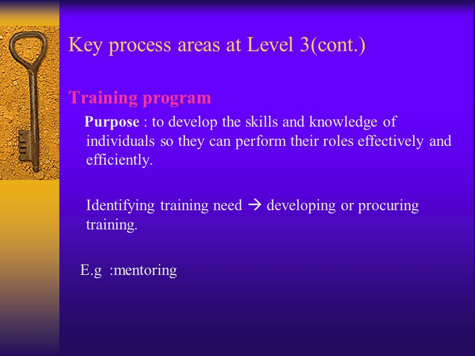 Key process areas at Level 3(cont.) Training program Purpose : to develop the skills and knowledge of individuals so they can perform their roles effectively and efficiently.