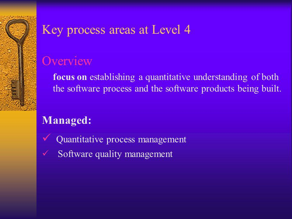 Key process areas at Level 4 Overview focus on establishing a quantitative understanding of both the software process and the software products being built.
