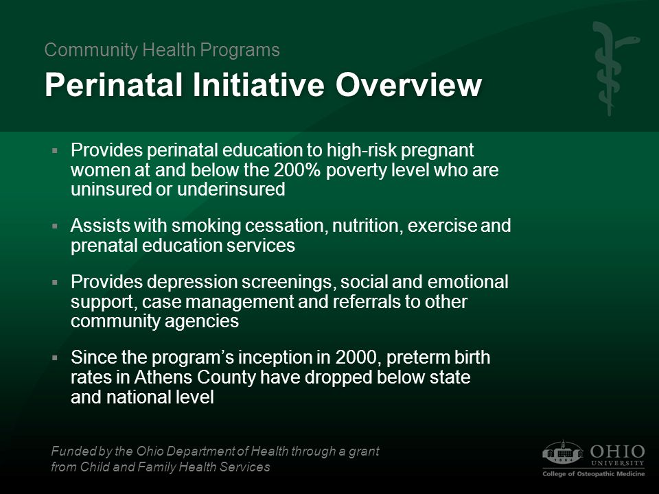 Perinatal Initiative Overview  Provides perinatal education to high-risk pregnant women at and below the 200% poverty level who are uninsured or unde