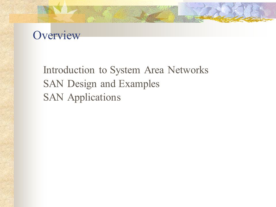 Introduction What is a SAN.