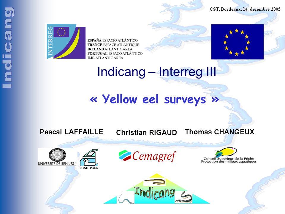 C. Pilotage, Bordeaux, 15 décembre 2005 Indicang – Interreg III « Yellow eel surveys » Pascal LAFFAILLEThomas CHANGEUX Christian RIGAUD CST, Bordeaux,