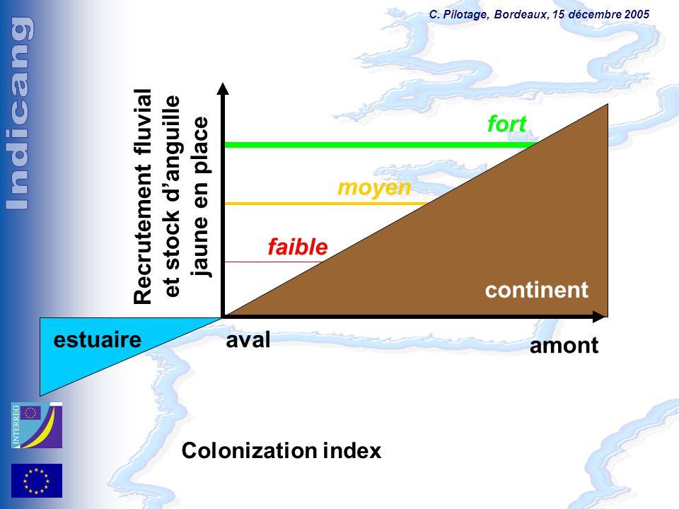 C. Pilotage, Bordeaux, 15 décembre 2005 fort moyen faible Recrutement fluvial et stock d'anguille jaune en place estuaireaval amont continent Coloniza