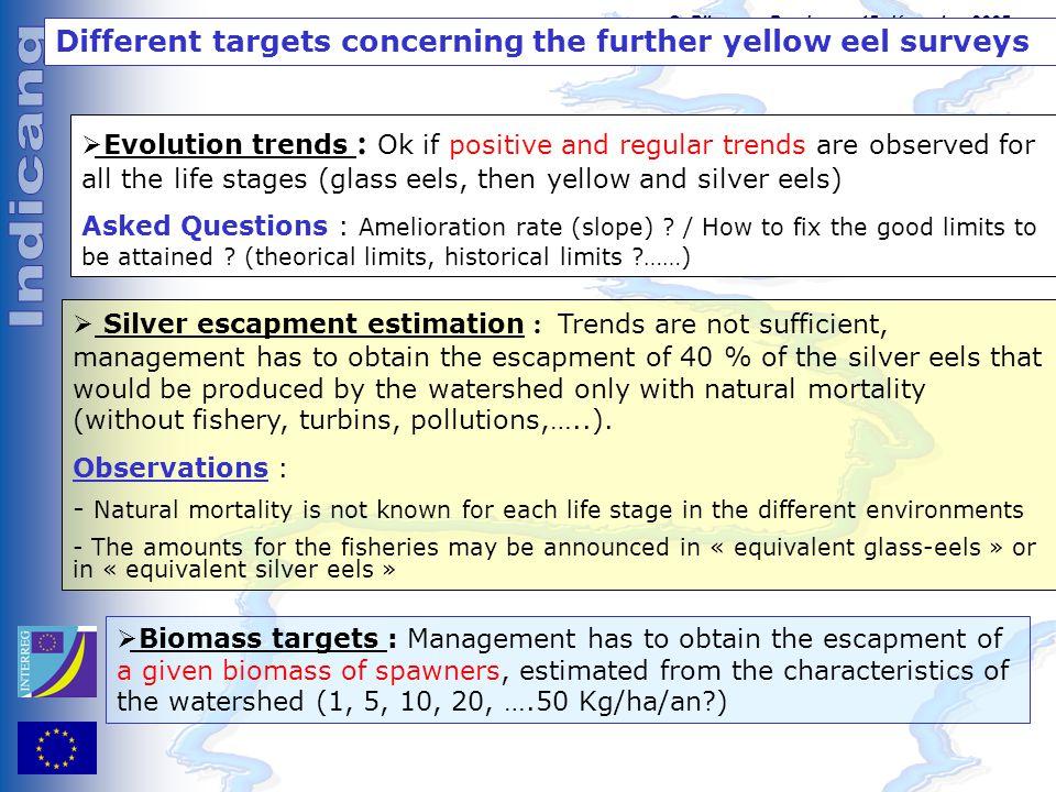 C. Pilotage, Bordeaux, 15 décembre 2005 Different targets concerning the further yellow eel surveys  Evolution trends : Ok if positive and regular tr