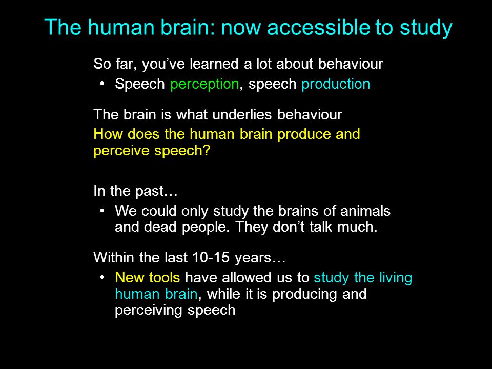 The human brain: now accessible to study So far, you've learned a lot about behaviour Speech perception, speech production The brain is what underlies