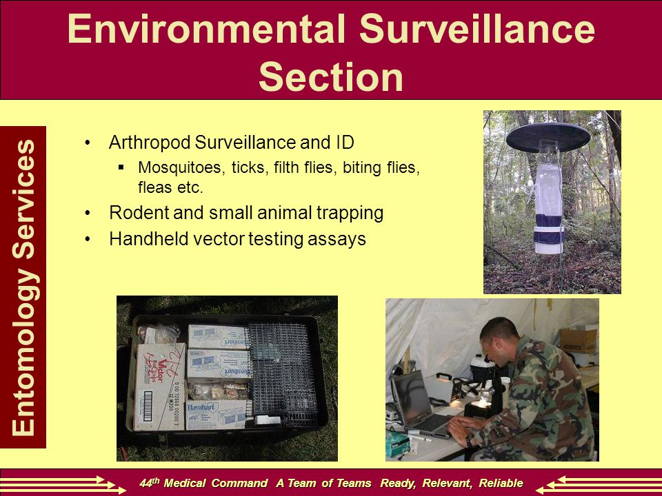 44 th Medical Command A Team of Teams Ready, Relevant, Reliable Entomology Services Arthropod Surveillance and ID  Mosquitoes, ticks, filth flies, biting flies, fleas etc.