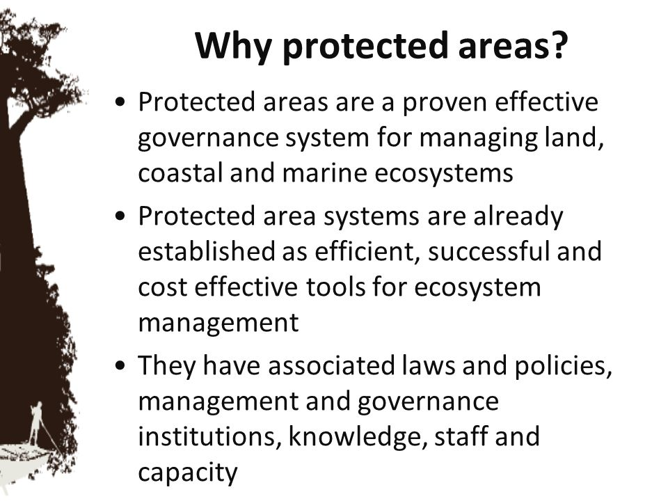 Adapting to climate change Measures are needed to maintain the resilience of ecosystems under new climatic conditions—so that they can continue to supply essential services Protected area management will need to be adapted, to address mitigation and adaptation needs, in addition to biodiversity management objectives.