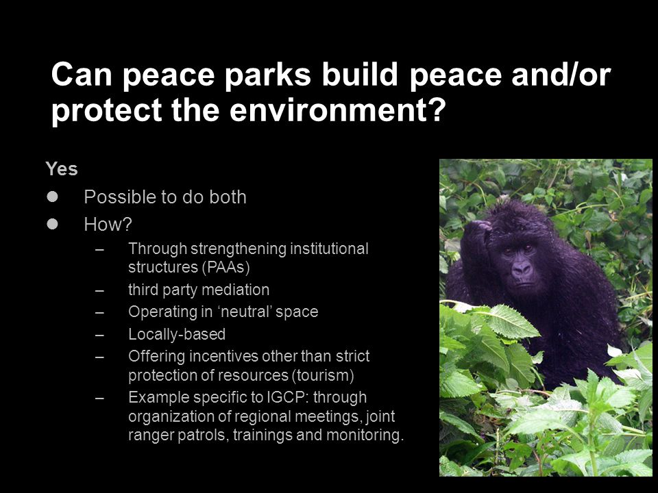 Can peace parks build peace and/or protect the environment.