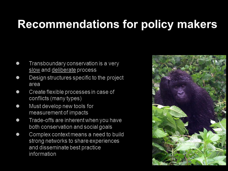 Recommendations for policy makers Transboundary conservation is a very slow and deliberate process Design structures specific to the project area Create flexible processes in case of conflicts (many types) Must develop new tools for measurement of impacts Trade-offs are inherent when you have both conservation and social goals Complex context means a need to build strong networks to share experiences and disseminate best practice information
