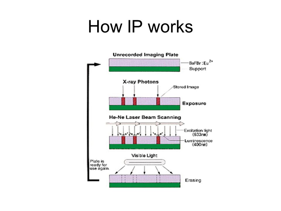 How IP works