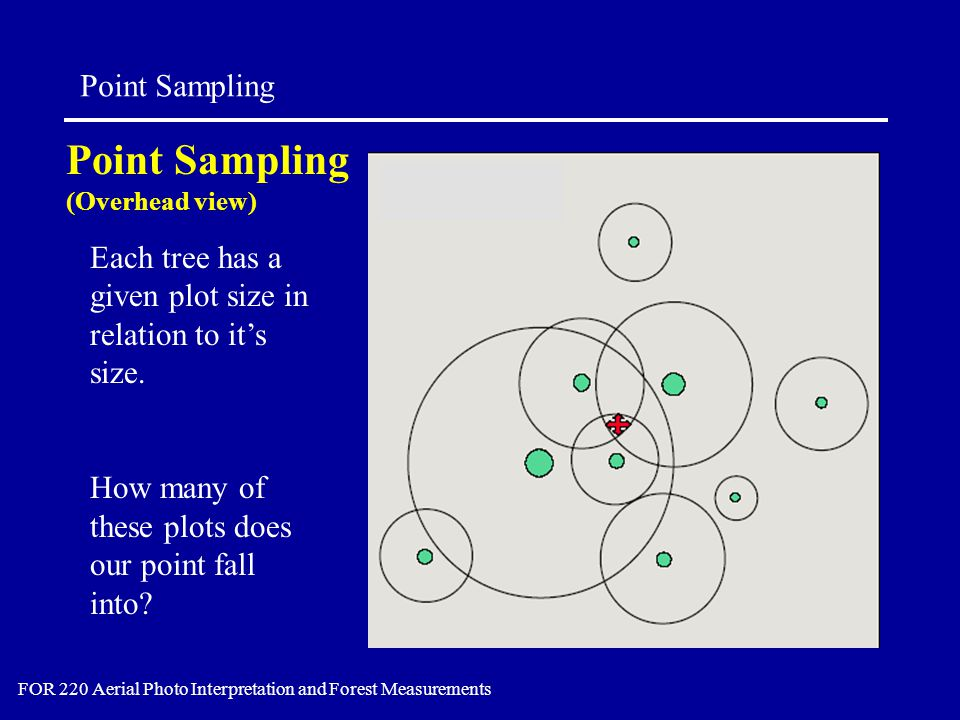 Point Sampling FOR 220 Aerial Photo Interpretation and Forest Measurements Point Sampling (Overhead view) Each tree has a given plot size in relation to it's size.