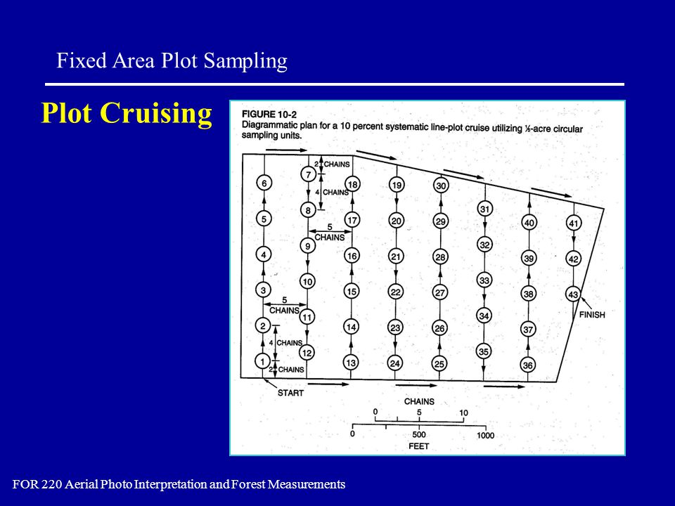 Plot Cruising Fixed Area Plot Sampling FOR 220 Aerial Photo Interpretation and Forest Measurements