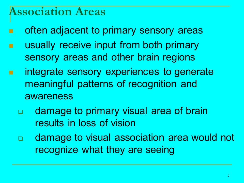 3 Association Areas often adjacent to primary sensory areas usually receive input from both primary sensory areas and other brain regions integrate sensory experiences to generate meaningful patterns of recognition and awareness  damage to primary visual area of brain results in loss of vision  damage to visual association area would not recognize what they are seeing