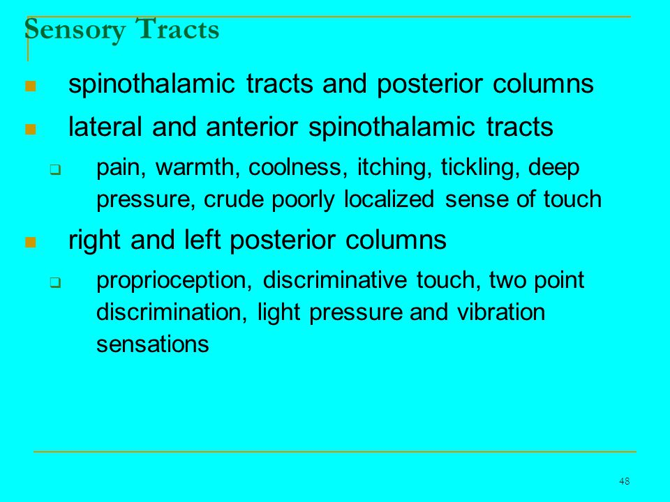48 Sensory Tracts spinothalamic tracts and posterior columns lateral and anterior spinothalamic tracts  pain, warmth, coolness, itching, tickling, deep pressure, crude poorly localized sense of touch right and left posterior columns  proprioception, discriminative touch, two point discrimination, light pressure and vibration sensations