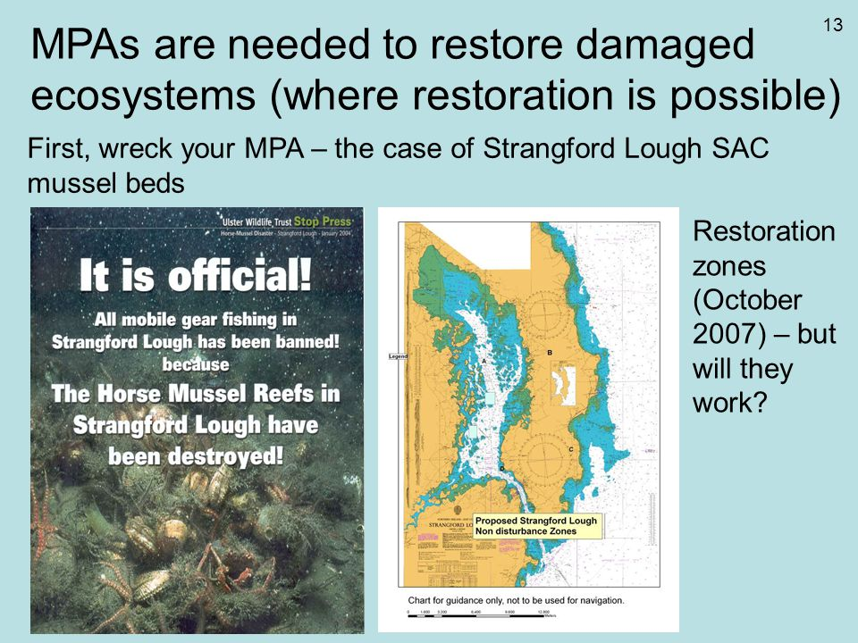 MPAs are needed to restore damaged ecosystems (where restoration is possible) First, wreck your MPA – the case of Strangford Lough SAC mussel beds Res