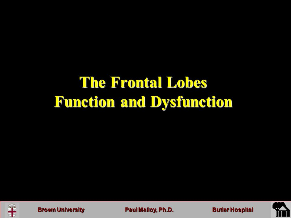 Brown UniversityPaul Malloy, Ph.D.Butler Hospital The Frontal Lobes Function and Dysfunction