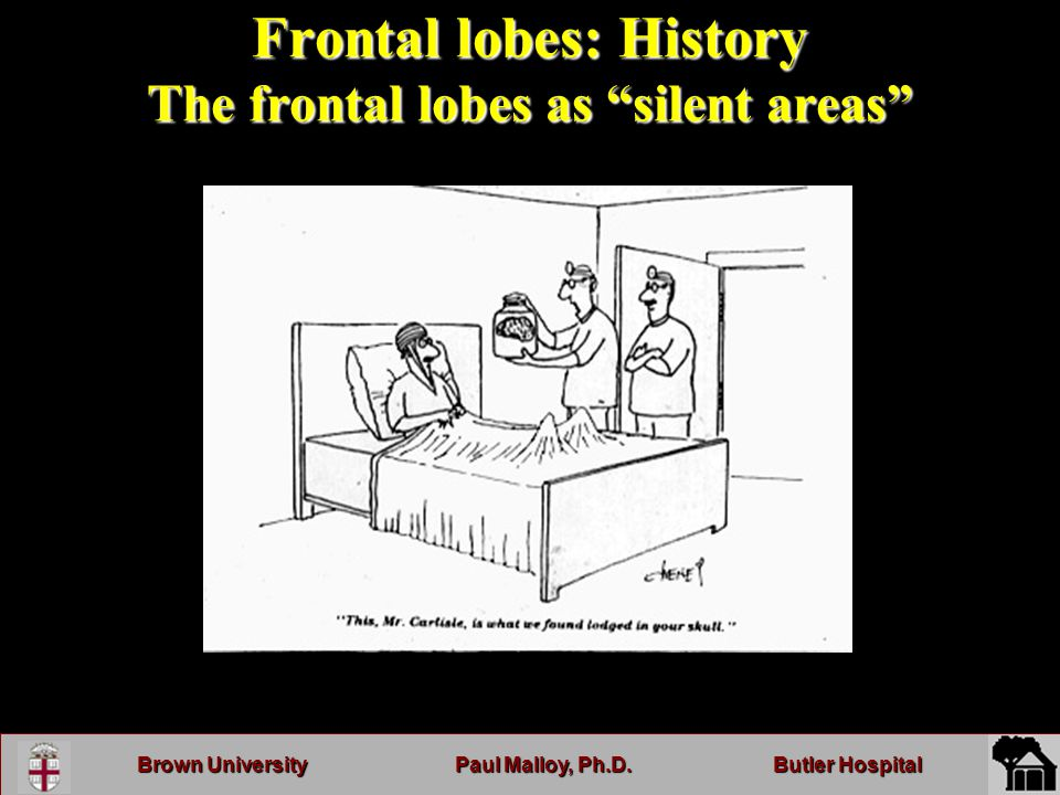 Brown UniversityPaul Malloy, Ph.D.Butler Hospital Frontal lobes: History The frontal lobes as silent areas