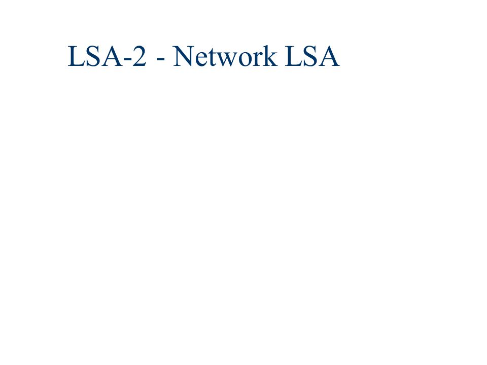 LSA-2 - Network LSA