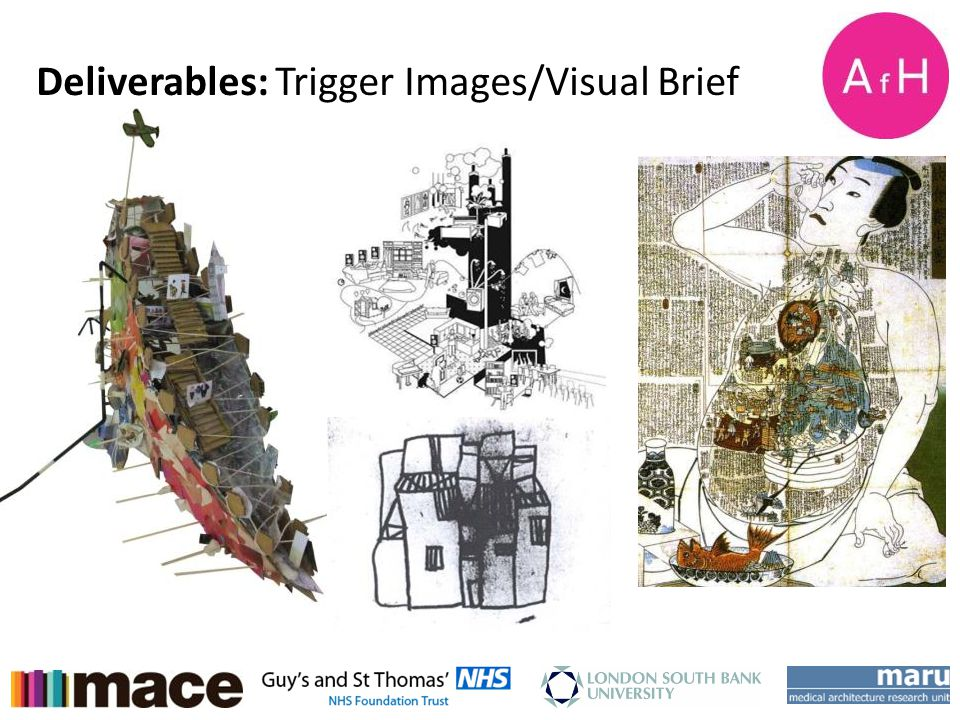 AfH Student Design Charette Week 15-18 th January 2013 Deliverables: Trigger Images/Visual Brief