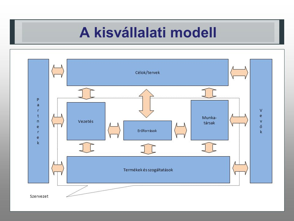A kisvállalati modell Szervezet Termékek és szogáltatások Vezetés Munka- társak Erőforrások VevőkVevők Célok/tervek PartnerekPartnerek