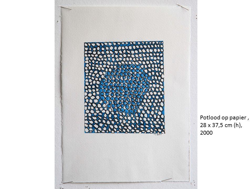 Potlood op papier, 28 x 37,5 cm (h), 2000