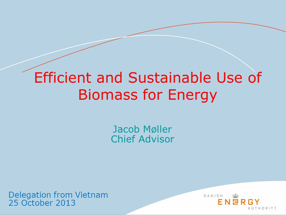 Efficient and Sustainable Use of Biomass for Energy Jacob Møller Chief Advisor Delegation from Vietnam 25 October 2013