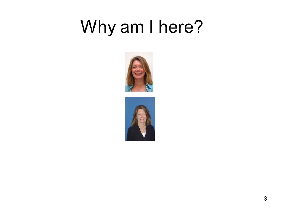 3 Why am I here