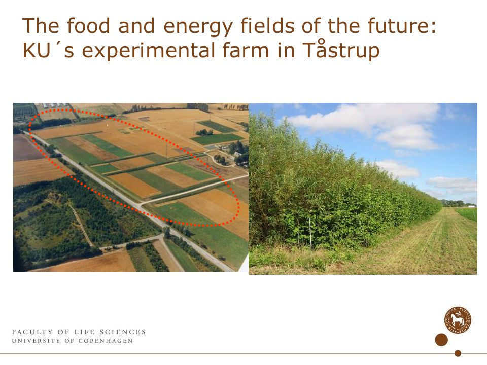 The food and energy fields of the future: KU´s experimental farm in Tåstrup