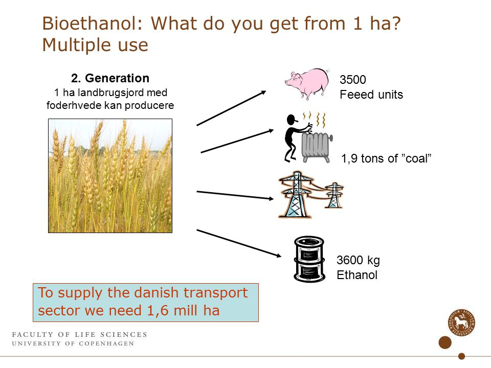 Bioethanol: What do you get from 1 ha. Multiple use 2.
