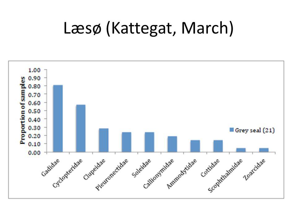 Læsø (Kattegat, March)