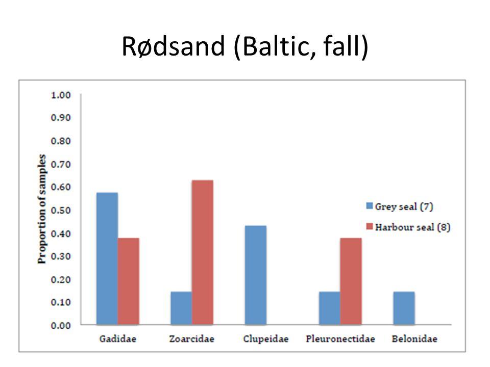 Rødsand (Baltic, fall)