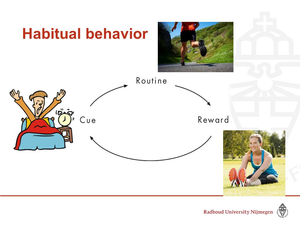 Habitual behavior