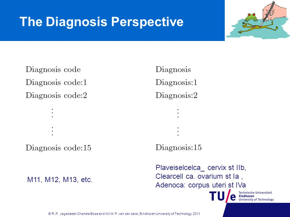 The Diagnosis Perspective © R.P. Jagadeesh Chandra Bose and Wil M.