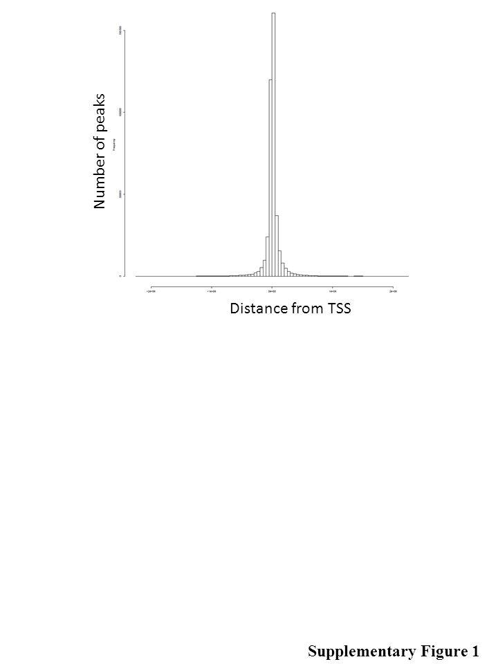 Supplementary Figure 2 Promoter Fraction 5' UTR Fraction Singletons Combinatorials Hotspots 3' UTR Fraction exon Fraction Intron Fraction