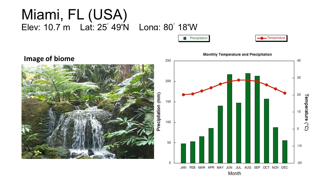 Hilo, HI (USA) Elev: 9.1 m Lat: 19˚ 43'N Long: 155˚ 04'W Image of biomeClimatograph