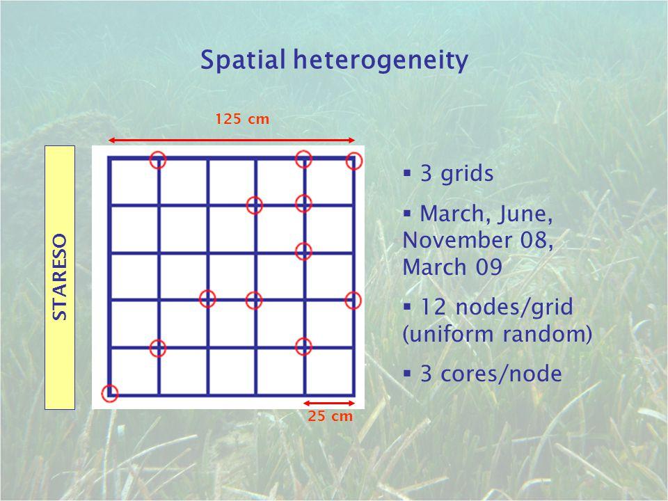 Spatial heterogeneity STARESO 125 cm 25 cm  3 grids  March, June, November 08, March 09  12 nodes/grid (uniform random)  3 cores/node