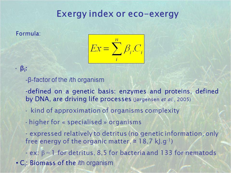 β i : -β-factor of the ith organism -defined on a genetic basis: enzymes and proteins, defined by DNA, are driving life processes (Jørgensen et al., 2005) - kind of approximation of organisms complexity - higher for « specialised » organisms - expressed relatively to detritus (no genetic information, only free energy of the organic matter, ≅ 18,7 kJ.g -1 ) - ex: β = 1 for detritus, 8,5 for bacteria and 133 for nematods Exergy index or eco-exergy Formula: C i : Biomass of the ith organism