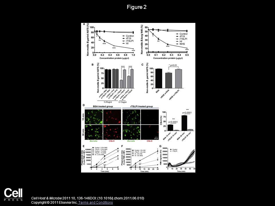 Figure 2 Cell Host & Microbe 2011 10, 136-146DOI: (10.1016/j.chom.2011.06.010) Copyright © 2011 Elsevier Inc.
