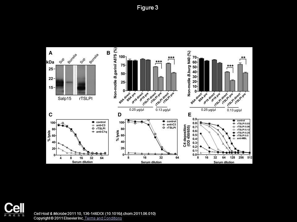 Figure 3 Cell Host & Microbe 2011 10, 136-146DOI: (10.1016/j.chom.2011.06.010) Copyright © 2011 Elsevier Inc.