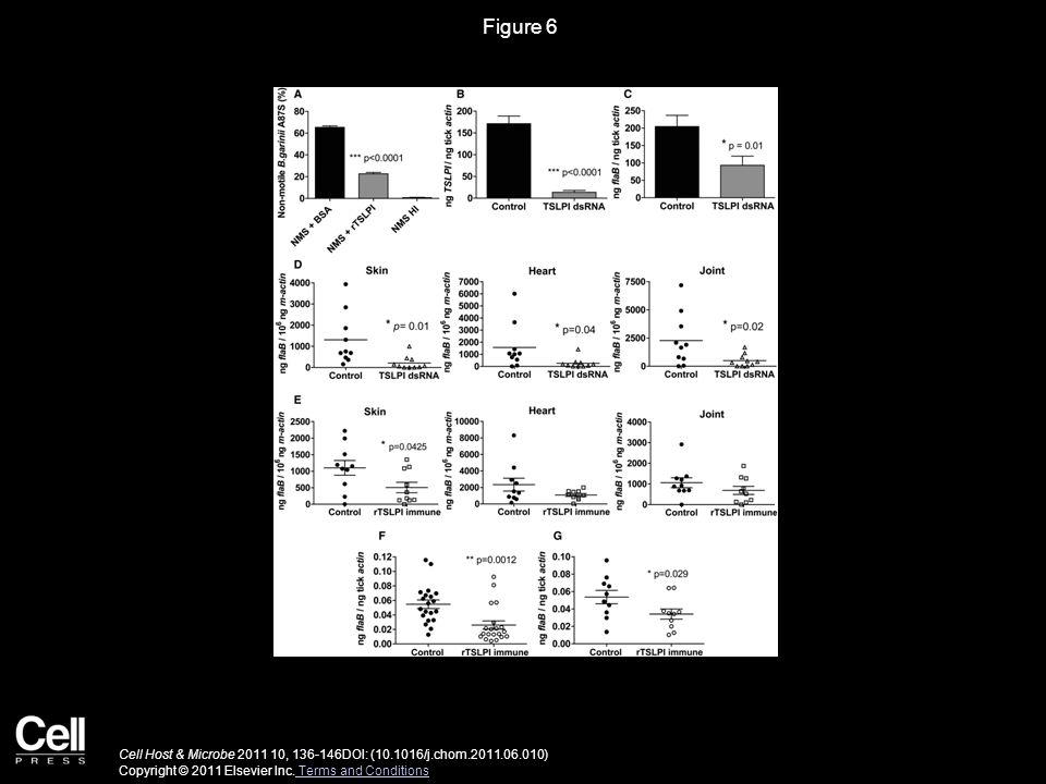 Figure 6 Cell Host & Microbe 2011 10, 136-146DOI: (10.1016/j.chom.2011.06.010) Copyright © 2011 Elsevier Inc.