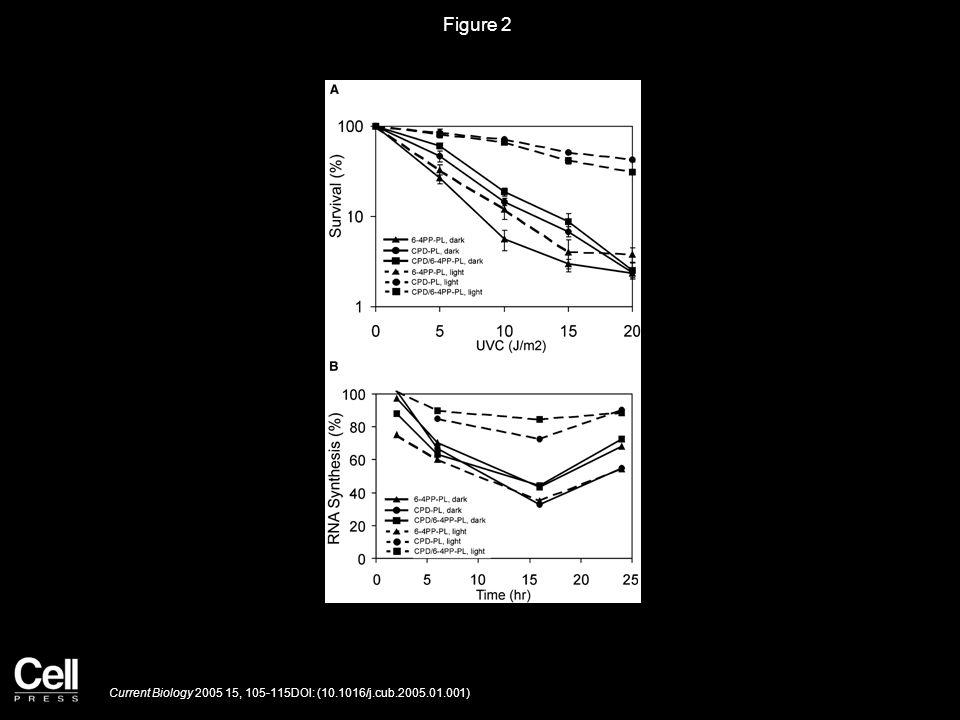 Figure 2 Current Biology 2005 15, 105-115DOI: (10.1016/j.cub.2005.01.001)