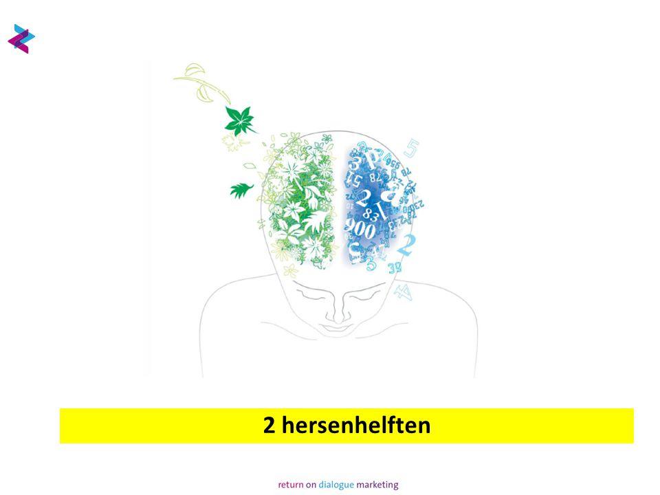 2 hersenhelften