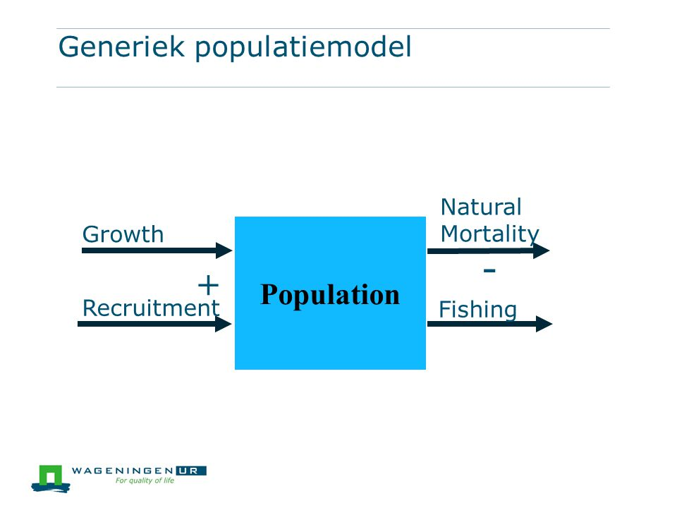 Generiek populatiemodel Population Growth Recruitment Natural Mortality Fishing + -