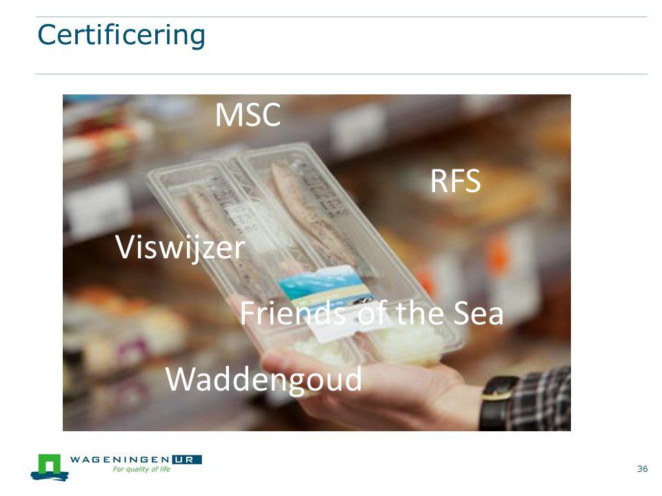 Certificering 36 MSC RFS Viswijzer Friends of the Sea Waddengoud