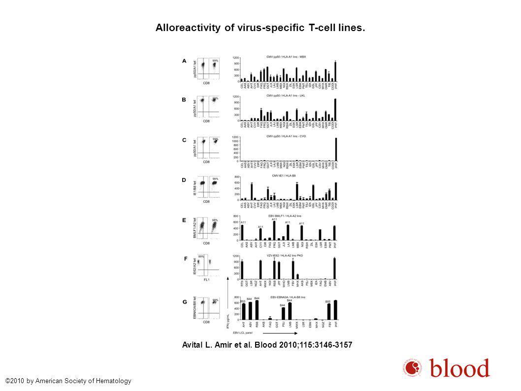 Allo-HLA reactivity of virus-specific T-cell clones.