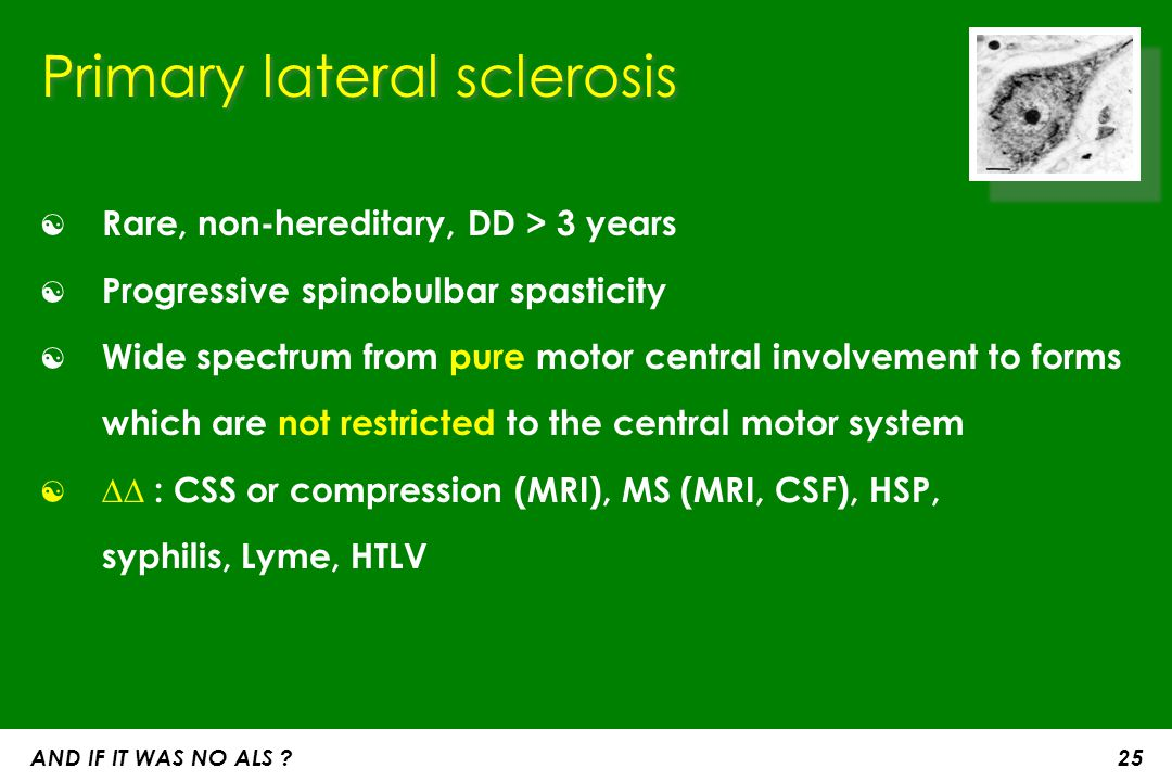 Primary lateral sclerosis ☯ Rare, non-hereditary, DD > 3 years ☯ Progressive spinobulbar spasticity ☯ Wide spectrum from pure motor central involvemen