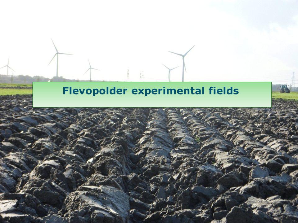Flevopolder experimental fields