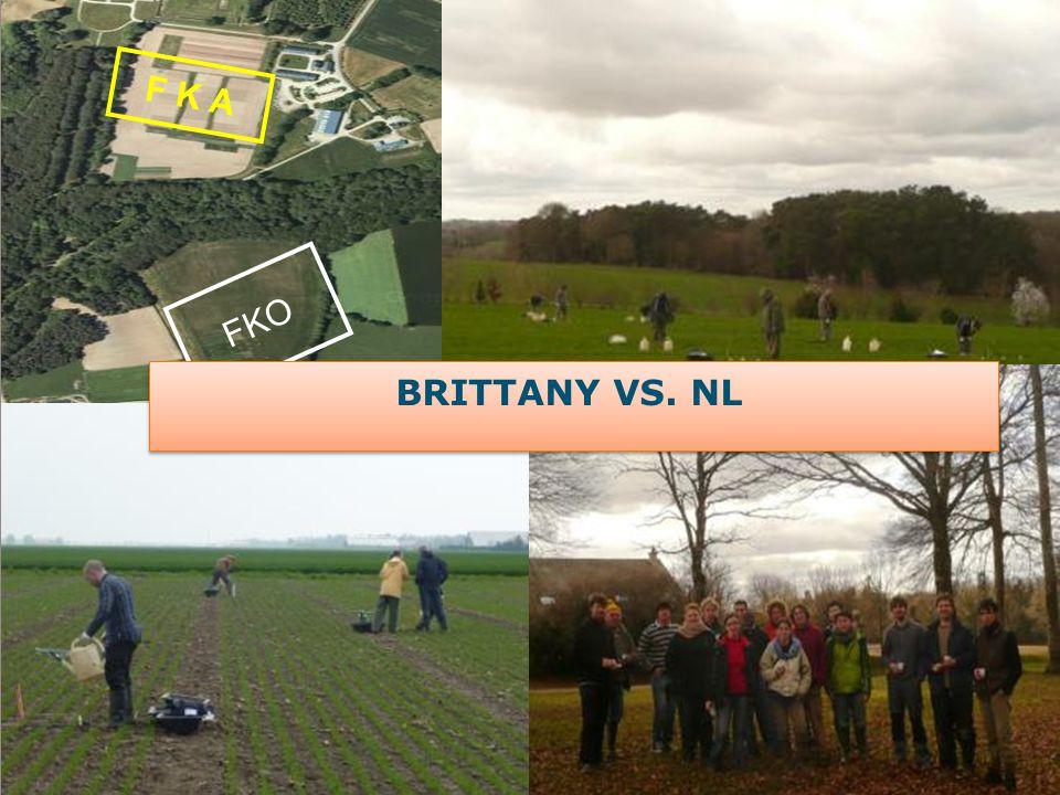 F K A FKO BRITTANY VS. NL