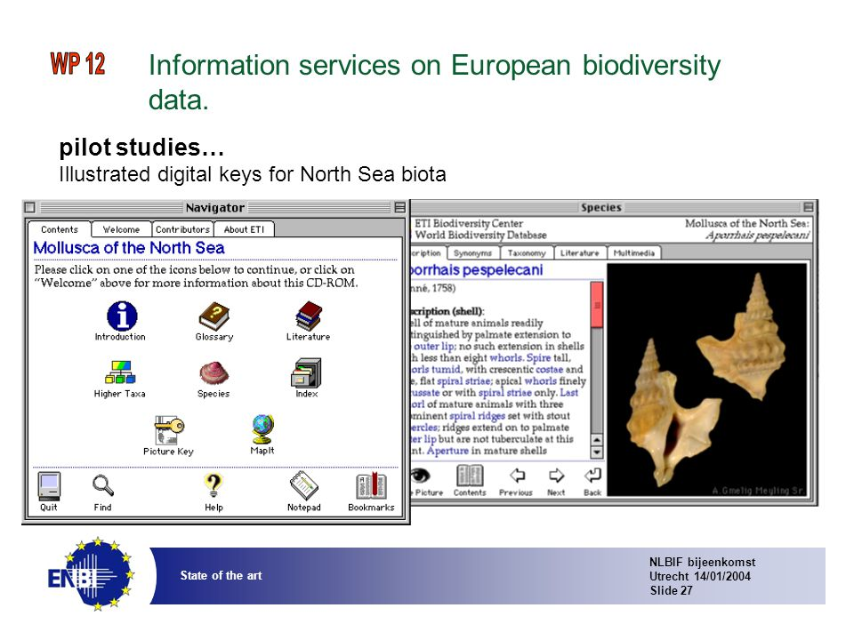 NLBIF bijeenkomst Utrecht 14/01/2004 Slide 27 State of the art Information services on European biodiversity data.