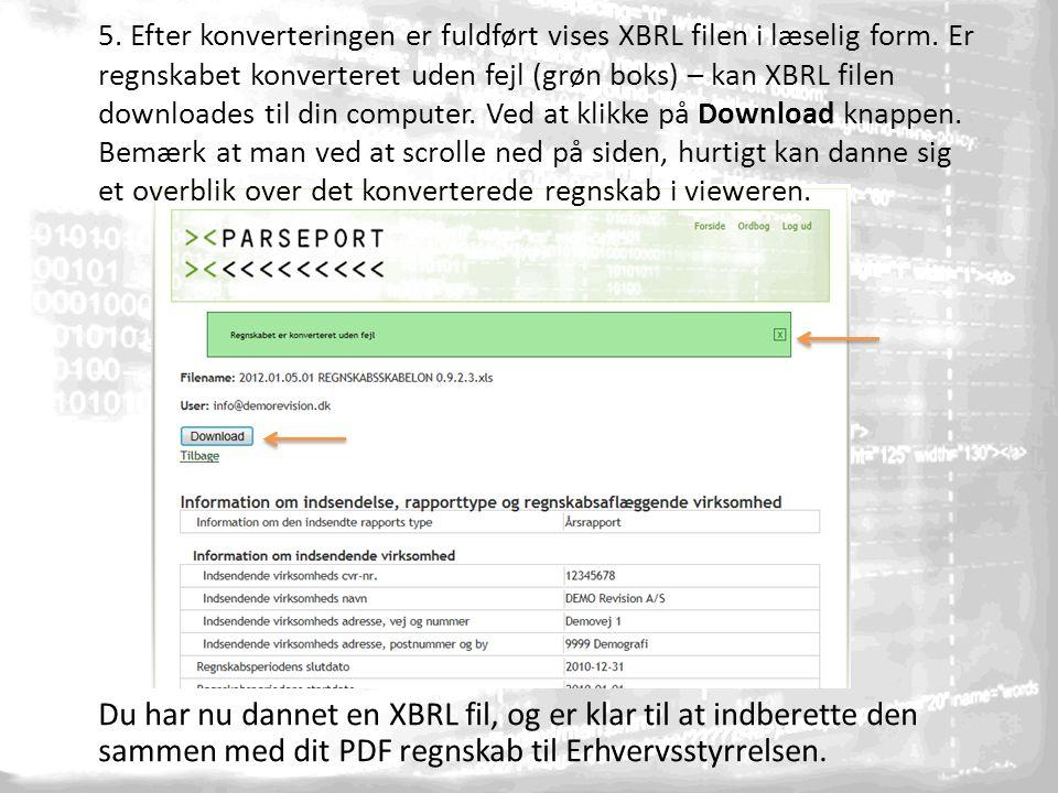 5. Efter konverteringen er fuldført vises XBRL filen i læselig form.